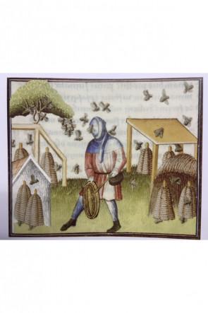 Gugel Curt - Wolle Blau